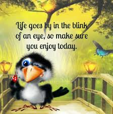 funny thanksgiving quotes inspirational life goes by in a blink of an eye enjoy today life quotes quotes