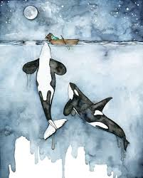 Whale Best 25 Whale Art Ideas On Pinterest Whale Drawing Whale And