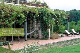 Grape Vine Pergola by Gap Gardens Climbers Cover The Terrace Pergola Including