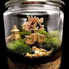 desk terrarium moss wine bottle desktop kit beach lamp open photos