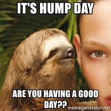 Hump Day Meme Dirty - it s hump day are you having a good day dirty sloth meme
