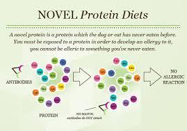 food allergies pet food nutrition