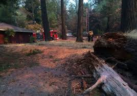 North Bay Fire Department Chief by North Bay Firestorm New Blaze Breaks Out In Santa Rosa Kron4 Com