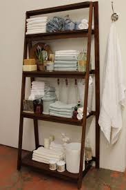 Leaning Bathroom Ladder Over Toilet by Ladder Shelf For Bathroom Home Design