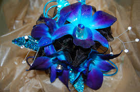 blue orchid corsage black and blue boring
