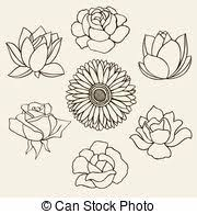 vector illustration of blackberry hand drawn sketch vector