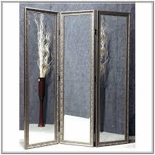 mirror room divider home design ideas