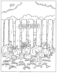 pumpkin patch coloring coloring pumpkin color sheet
