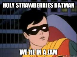 Meme Batman Robin - holy strawberries batman we re in a jam holy robin quickmeme