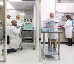 Utmb Help Desk Lung Lab Wonders Utmb Health Utmb Wonders Utmb Health
