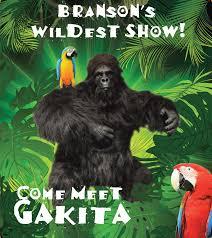 meet gakita the gorilla at hamners variety show