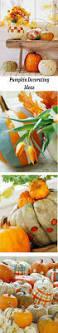 146 best pumpkin decorating images on pinterest decorating