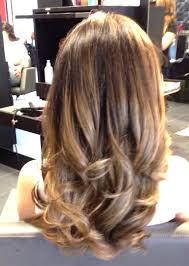 caramel brown hair with honey blonde highlights board