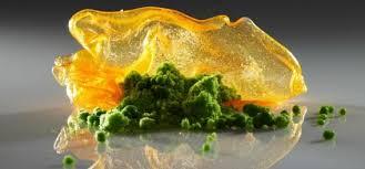 cuisine moleculaire recette la cuisine moléculaire à lire