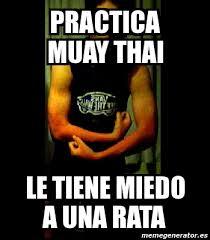 Muay Thai Memes - meme personalizado practica muay thai le tiene miedo a una rata