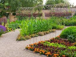 best plants selection to build small home garden 4 home decor