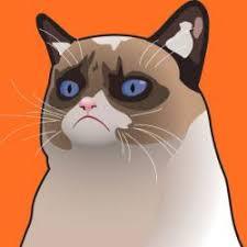 Cartoon Cat Memes - cartoon grumpy cat meme generator
