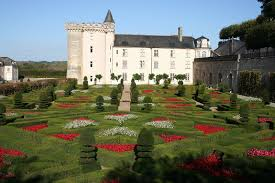 chateaux and wine around villandry loire valley wine tour guided tours of the loire valley