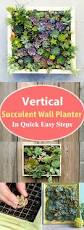 vertical succulent wall planter in quick easy steps diy