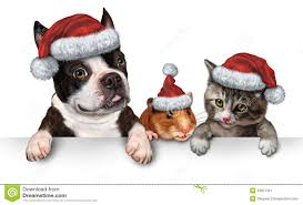 pet christmas christmas pet sign stock image image 33827391