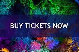 enchanted forest of light tickets enchanted forest of light at descanso gardens ends jan 8 2017