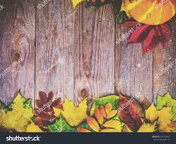 halloween autumn background autumn background colorful leaves pumpkins on stock photo