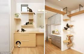 does it come fully fur nished dream home designed especially for