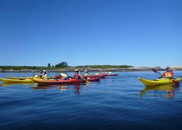 hike and kayak coastal maine u2013 sierra club