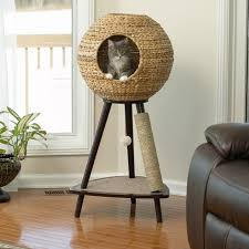 Make Your Own Cat Tree Plans Free by Best 25 Cat Scratching Post Ideas On Pinterest Diy Cat
