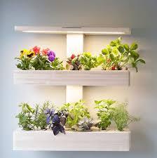 indoor wall garden ēdn smart automated indoor gardens shark tank products