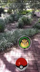 harry p leu gardens leugardens twitter