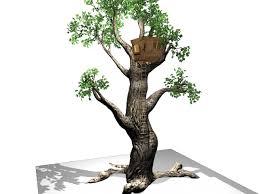 Magic Treehouse - the magic tree house u0026 tree