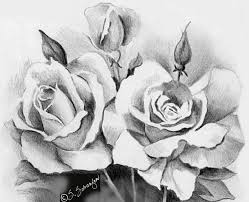 beautiful sketches of flowers beautiful rose flower bouquet
