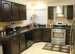 painted cabinet ideas kitchen painted kitchen cabinet ideas to freshen up your kitchen espresso