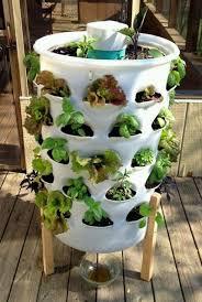 compact garden ideas lawsonreport d1a29c584123