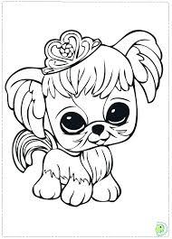 littlest pet shop coloring pages of dogs lps coloring pages littlest pet shop coloring pages peacock unique
