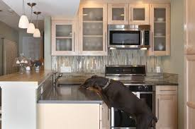 Galley Kitchen Ideas Makeovers Small Small Condo Kitchen Condo Kitchen Remodel Ideas Design