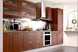 European Hinges For Kitchen Cabinets Kitchen European Kitchen Cabinets Satisfying European Kitchen