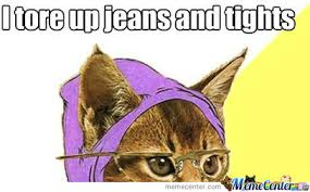 Hipster Cat Meme - hipster cat is too hipster for you by heybaybay meme center