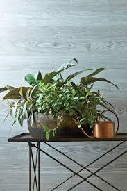 Indoor Plant Arrangements Indoor Container Garden Ideas Southern Living