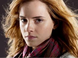 hermione granger hermione fictional characters and harry potter