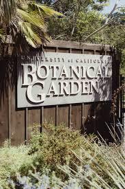 Berkeley Botanical Garden Wedding Real Couples Uc Botanical Garden Wedding In Berkeley