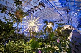 Oklahoma City Botanical Garden Inside The Bridge At Christmastime Picture Of Myriad
