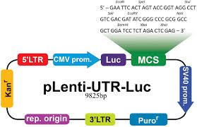 Tcc Map Plenti Utr Luc Vector Map Abm Inc