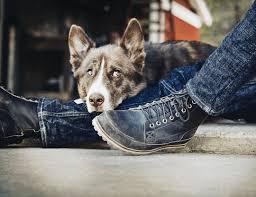 timberland earthkeeper boots footwear pinterest