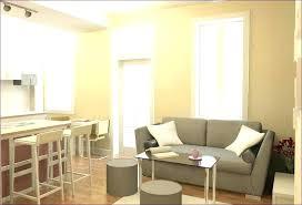 Studio Apartment Furnishing Ideas Studio Apartment Bedroom Ideas Biggreen Club