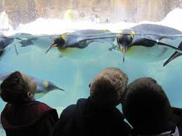 fun things to do in omaha with kids b interactive