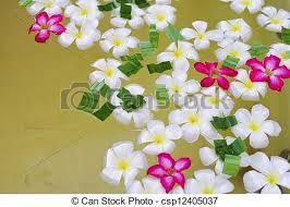 imagenes flores relajantes agua balneario flores relajante fotos de archivo buscar