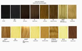 What Color To Dye Your Hair Hair Extensions Coloring Hair Extensions Usa