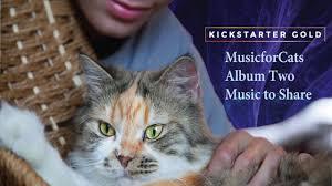 Cat Photo Album Musicforcats Album Two On Kickstarter Gold Youtube